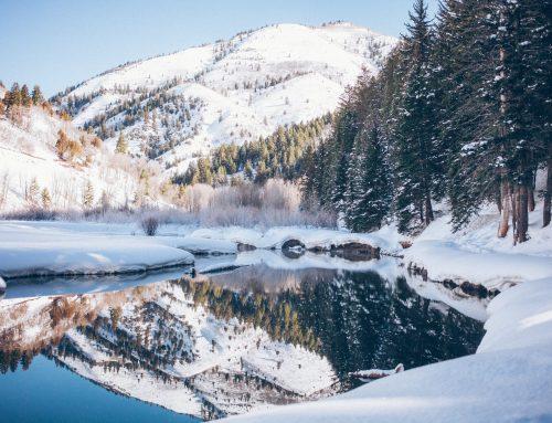 Y llego el invierno…